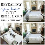 RUG REVEAL DAY!  IS IT RUG – 1, 2 or 3