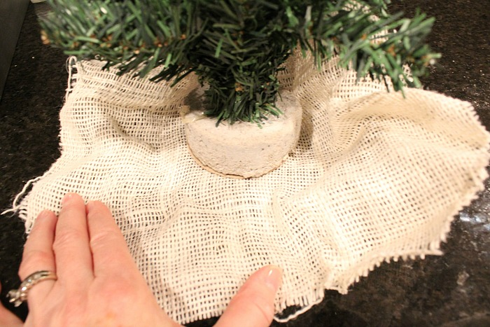 mini-tree