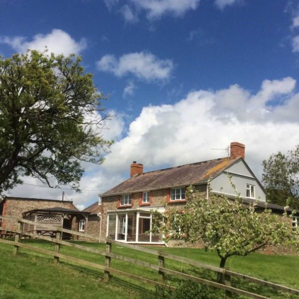 Accommodation in Rural West Dorset Cardsmill Farm Holidays