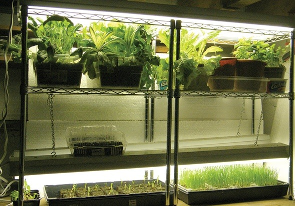 Review Of The Best Hydroponics Grow Tent Kits