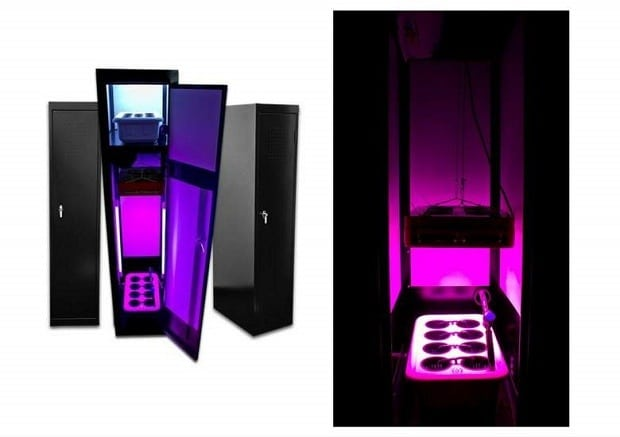 LED growing box