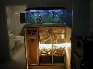 DIY hydroponic grow closet