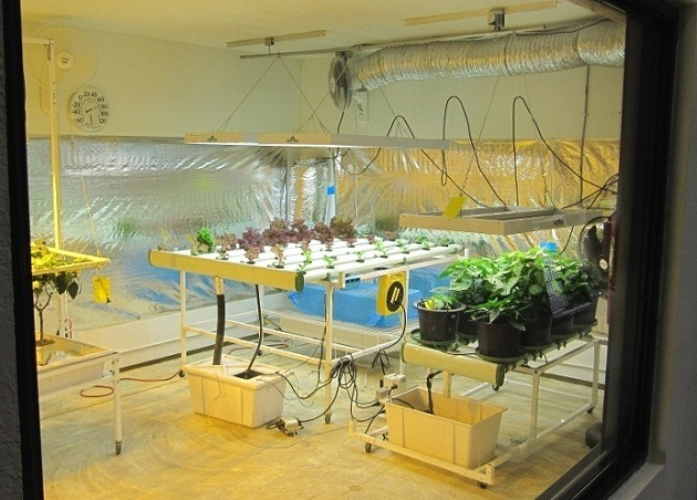 Review Of The Best Hydroponic Grow Room With Instructions