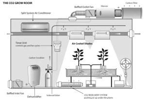 Hydroponics Grow room ventilation