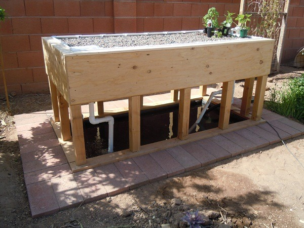 Strong aquaponics greenhouse systems with diy grow beds for Hydroponic fish tank diy