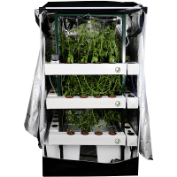 The Dynamics Of Gorilla Grow Tent Setup You Must Know