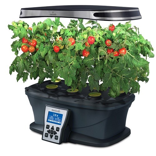 Indoor Hydroponic Garden Indoor hydroponic garden kits that guarantee incredible results indoor cherry tomatoes workwithnaturefo