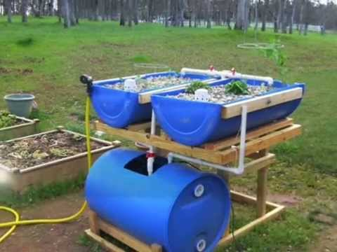 Hydroponic Grow Bed Setup