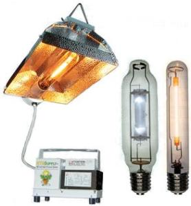 HID Lamps for growing