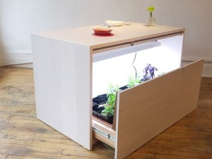 Hydroponic Indoor Cupboards