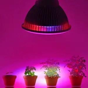 Best Plant LED Light