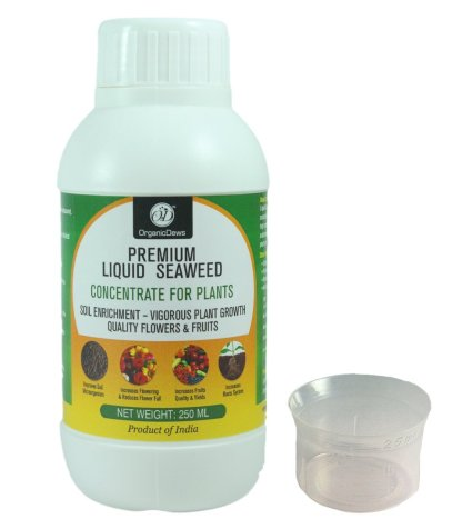 OrganicDews Liquid Seaweed Concentrate for Plants 250 ml with Measuring Cup 25 ml Fertilizer for All Indoor and Outdoor Plants Brand: OrganicDews
