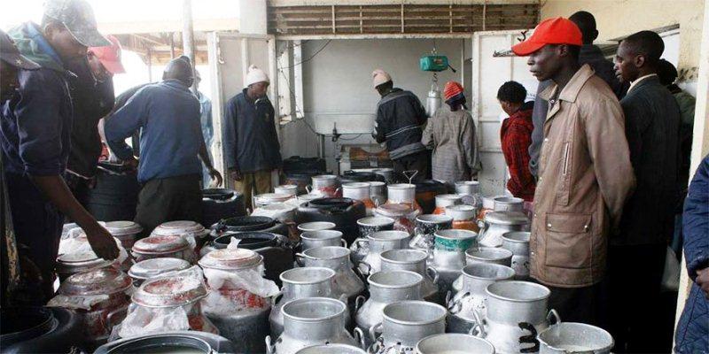 nyandarua milk prices