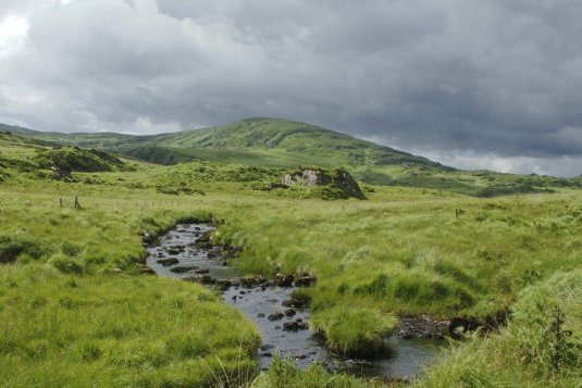 WEST OF IRELAND FARMSTAY