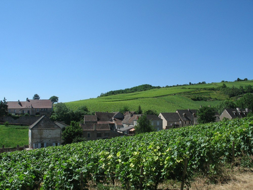 Vineyard Hotel in Burgundy, eastern France.