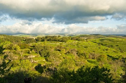 Farm-stays-In-Sicily