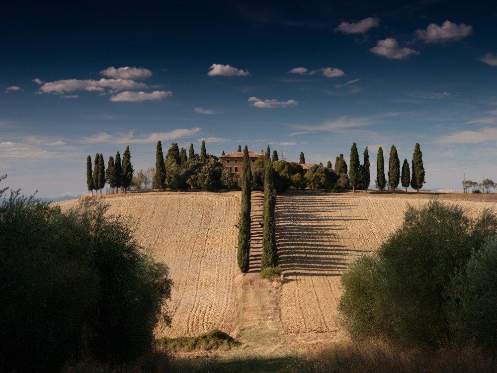 fields-farmstay spain