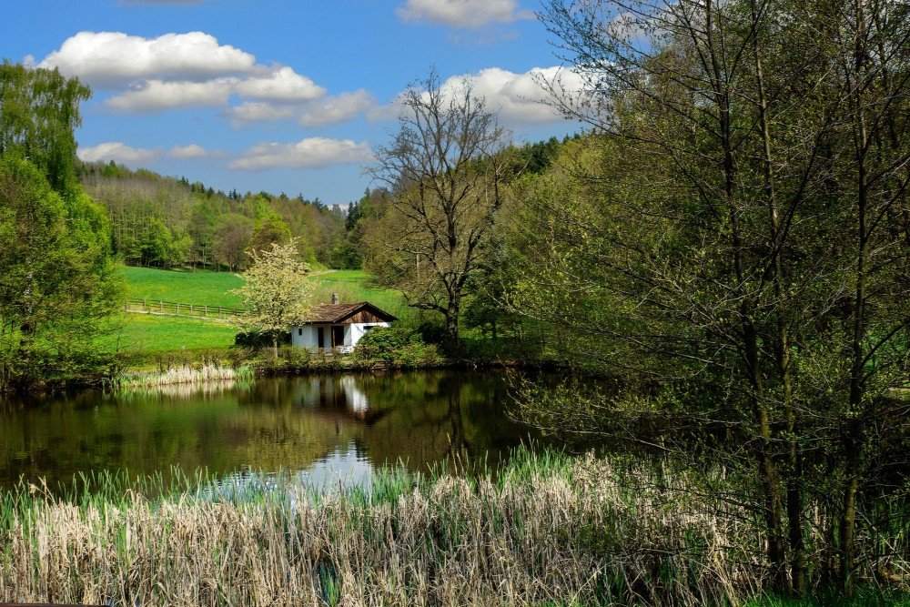 Farmstay Germany Agritourism Vineyard Hotels