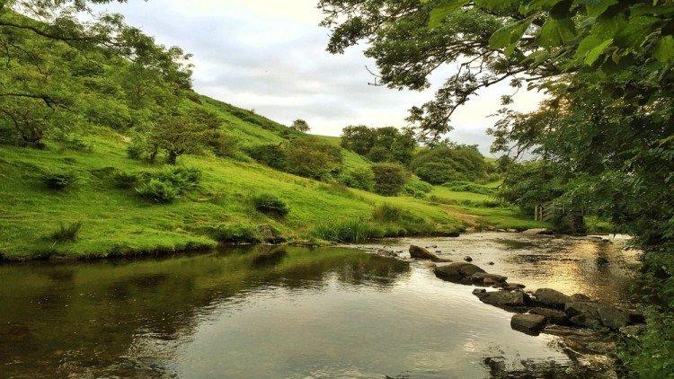 stream beside country cottage, devon