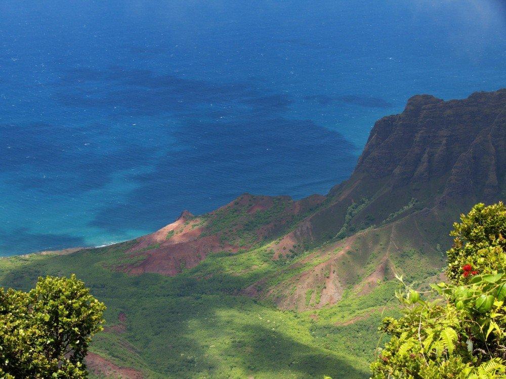 hawaii-farmstay usa
