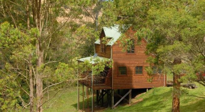 Organic Farmstay & Rural Retreat, Barrington Tops, NSW.