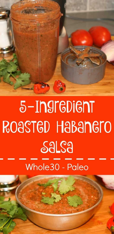 Five Ingredient Roasted Habanero Salsa
