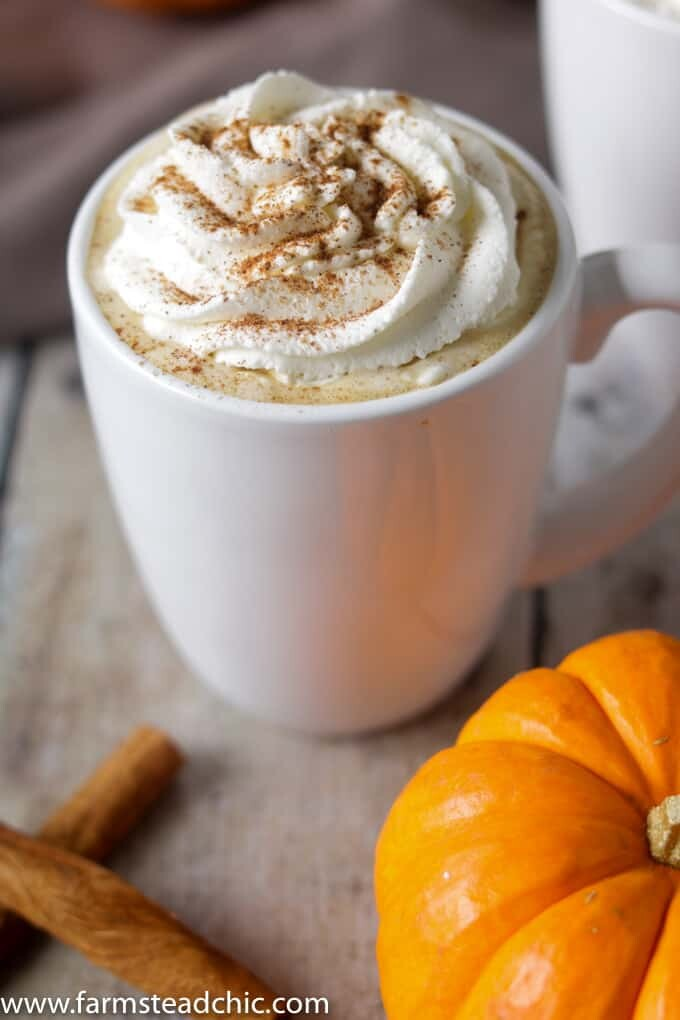 This Paleo and Whole30 Pumpkin Spice Latte needs just four ingredients and an inexpensive milk frother. In less than ten minutes, you'll have a healthy, dairy-free cup full of autumn right in your hands. If youdon't have a milk frother, a blender will do just fine.