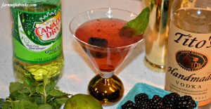This ginger blackberry cocktail is a simple vodka cocktail recipe. No fancy, hard to find ingredients.