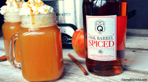Warm Vanilla Wassail is a sweet combination of apple cider, pineapple juice, orange and vanilla bean. Topped off with Don Q oak barrel spice rum and you have a warm and spicy drink.