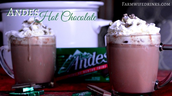 The crock pot Andes mint hot chocolate was sweet and decadent and smooth. All the things one would imagine when you combine Andesmints with milk and a few other rich ingredients.