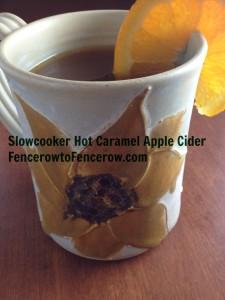 Crock Pot Hot Caramel Apple Cider