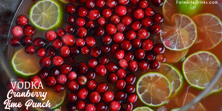 Vodka-Spiked Cranberry Lime Punch is the perfect Christmas punch as it can be kid friendly and have a dose of lime vodka for the adults.