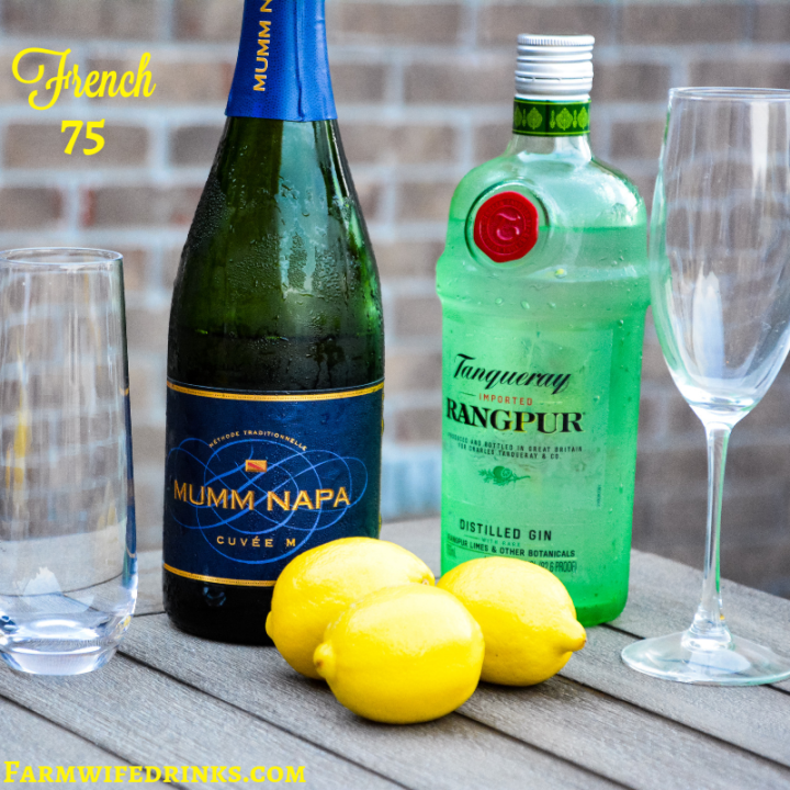 The French 75 is a combination of lemon juice, simple syrup and gin topped off with prosecco.#Prosecco #CocktailRecipe #Cocktails #French75 #Gin