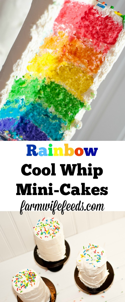 Rainbow Cool Whip Mini Cakes