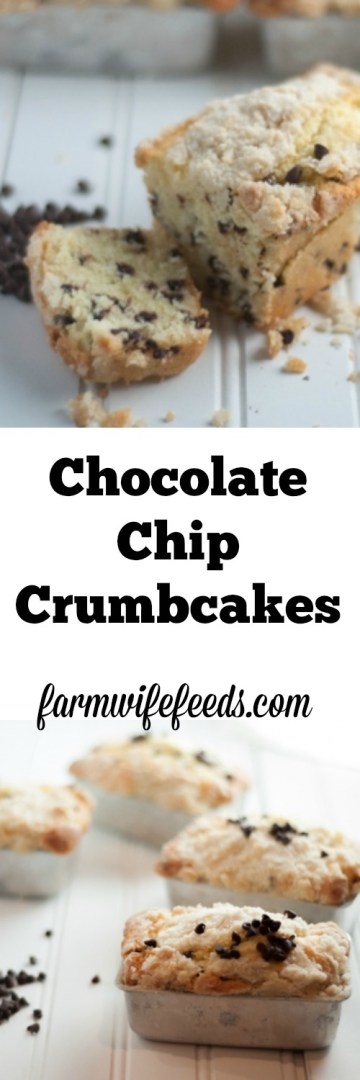 Individual Chocolate Chip Crumbcakes, just like they make at Disney World. Serve them at breakfast or for dessert, you will love this recipe.