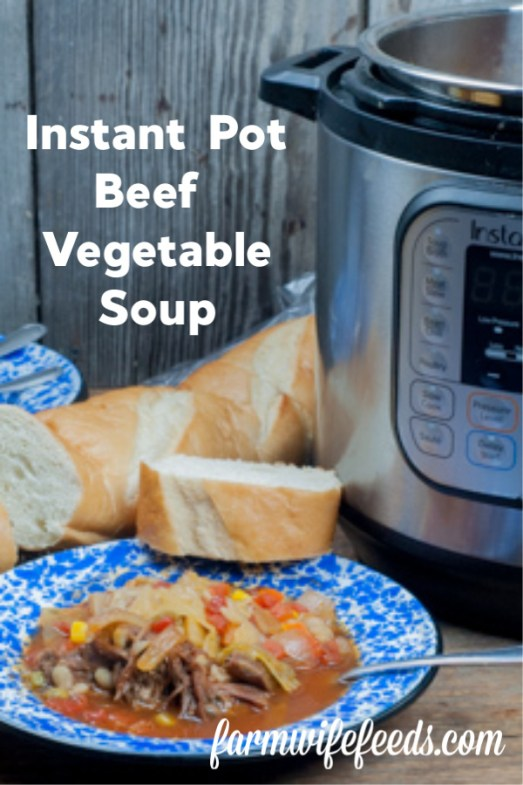 Instant Pot Beef Vegetable Soup from Farmwife Feeds tastes like it cooked all day-life and meals should be easy and delicious. #instantpot #recipe #soup #vegetablesoup
