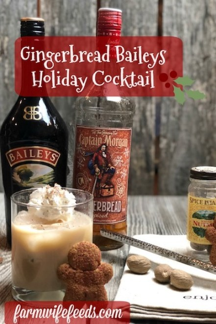 Gingerbread Baileys Holiday Cocktail from Farmwife Feeds is a festive seasonal cocktail made with Captain Morgans Gingerbread Rum! #cocktail #gingerbread #rum #baileys