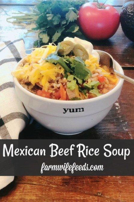 Mexican Beef Rice Soup from Farmwife Feeds is an easy soup that tastes summer fresh anytime of the year. #soup #mexican #salsa #rotel
