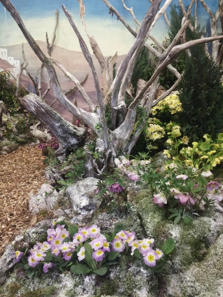winter gardening weekend 2
