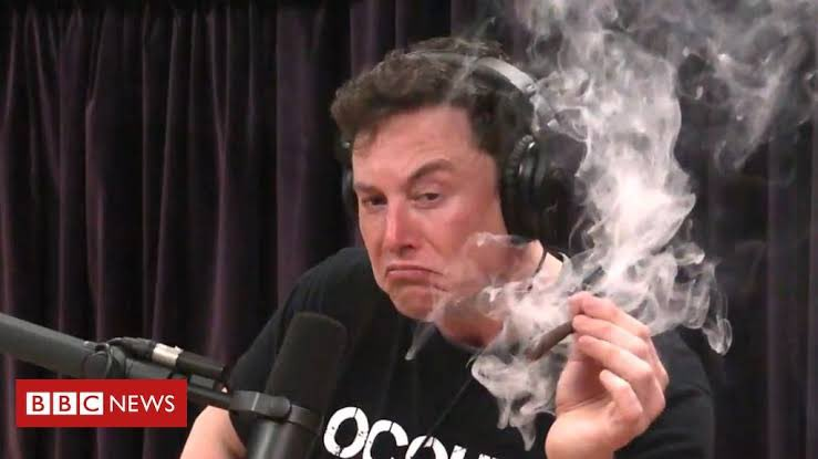 Elon chapado - Memes diferentes para usar durante a pandemia - Blog Farofeiros