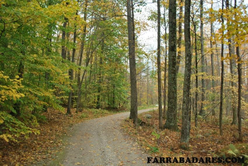 Hildene - trilha entre a fazenda e a casa
