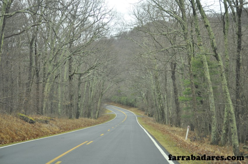 Shenandoah National Park - Skyline Drive