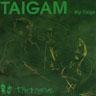 Taigam - My Taiga