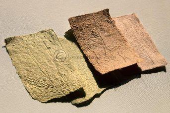 Plantefarvet papir med tryk og struktur