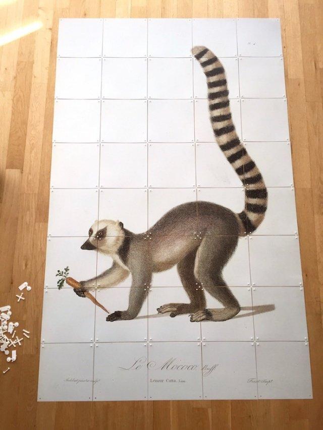 Inspiration_interieur_ixxi_lemur_05