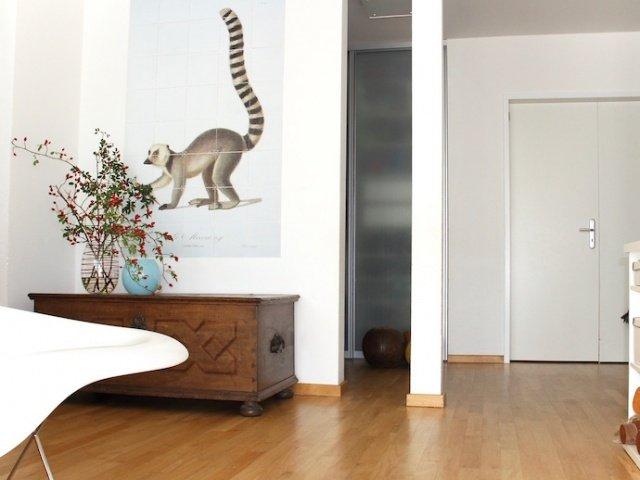 Inspiration_interieur_ixxi_lemur_06