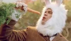 robbie rabbit1