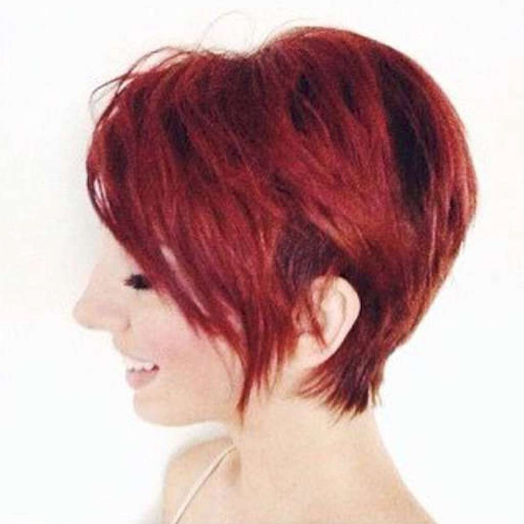 Short Hairstyles – 528