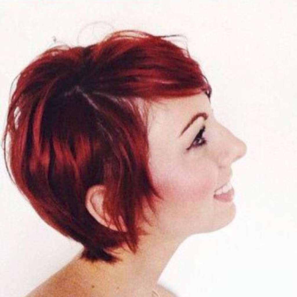 Short Hairstyles – 529