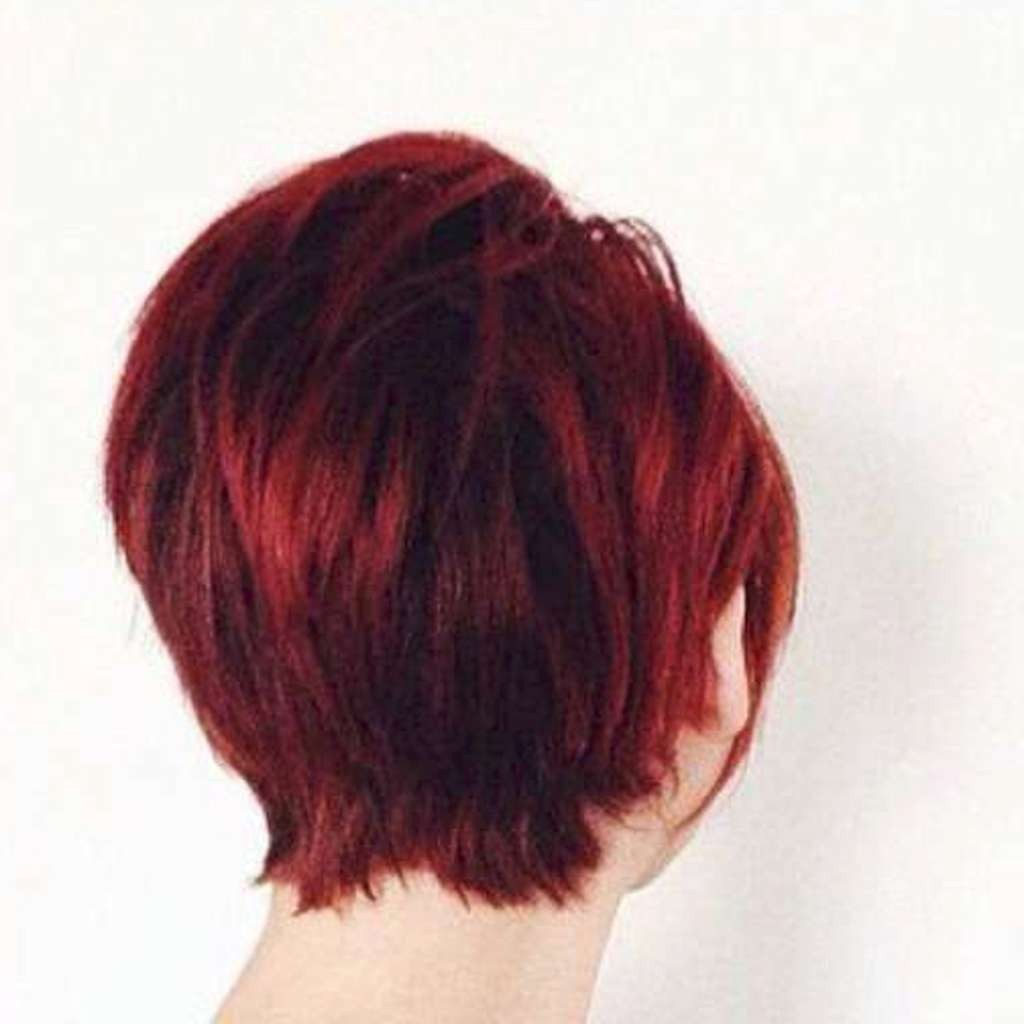 Short Hairstyles – 530